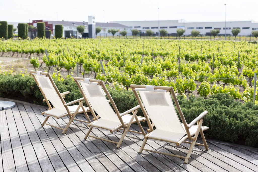 Visita a Bodega, Terraza Wine Bar