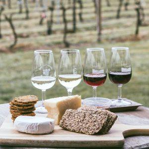 cata vinos con quesos